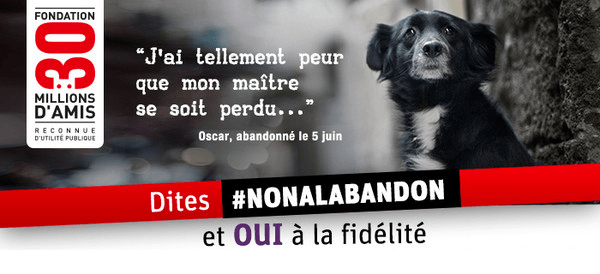 https://www.patateanonyme.fr/30-millions-amis/